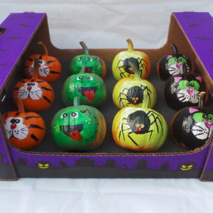 painted pumpkin, pumpkin, animals, pet shop, pet shop friends, cutie pie