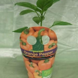 Orange Pepper, Pepper, tote, veggie, vegetable