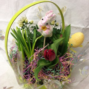 Spring Garden, Wicker Basket, bulb, Easter basket