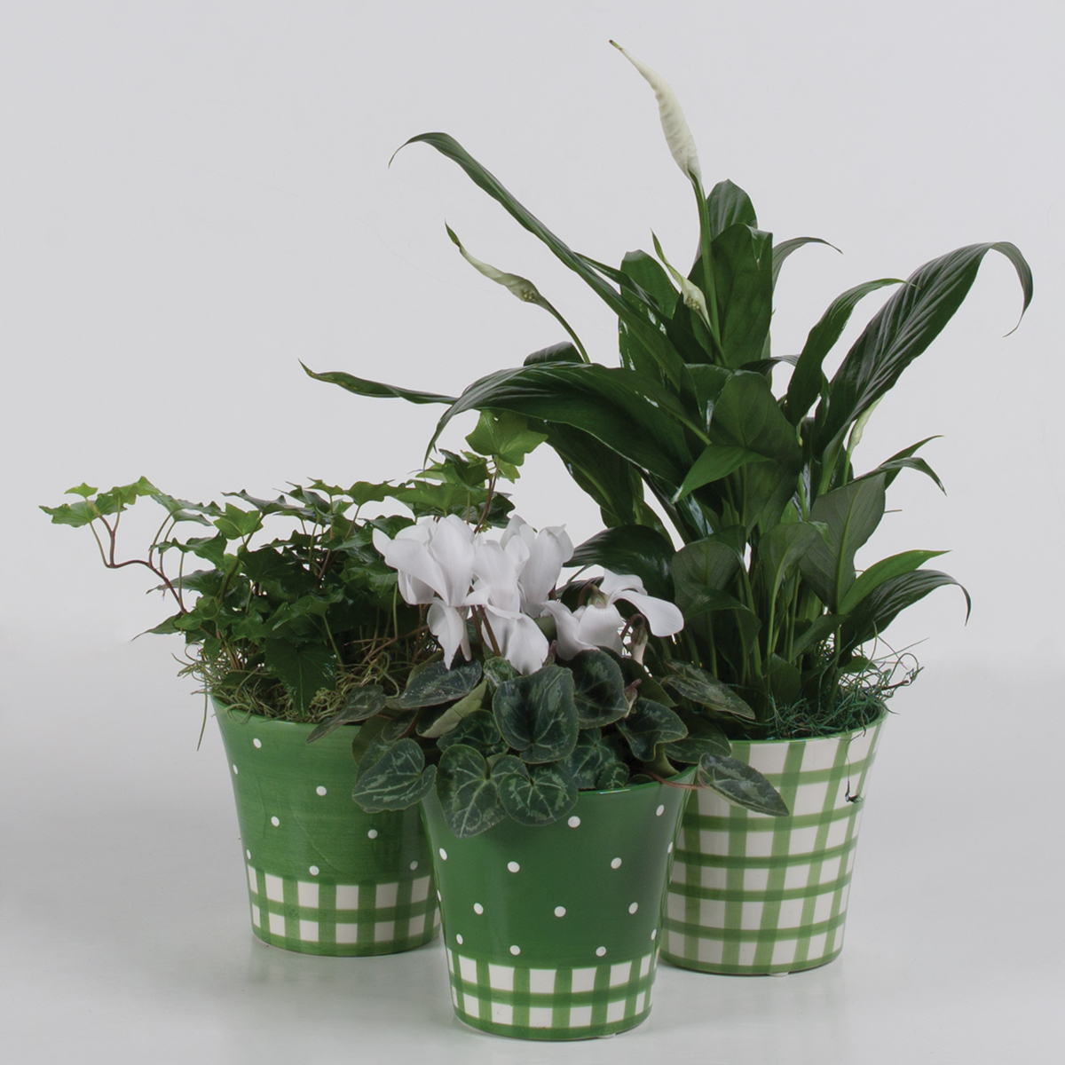 Easter planters