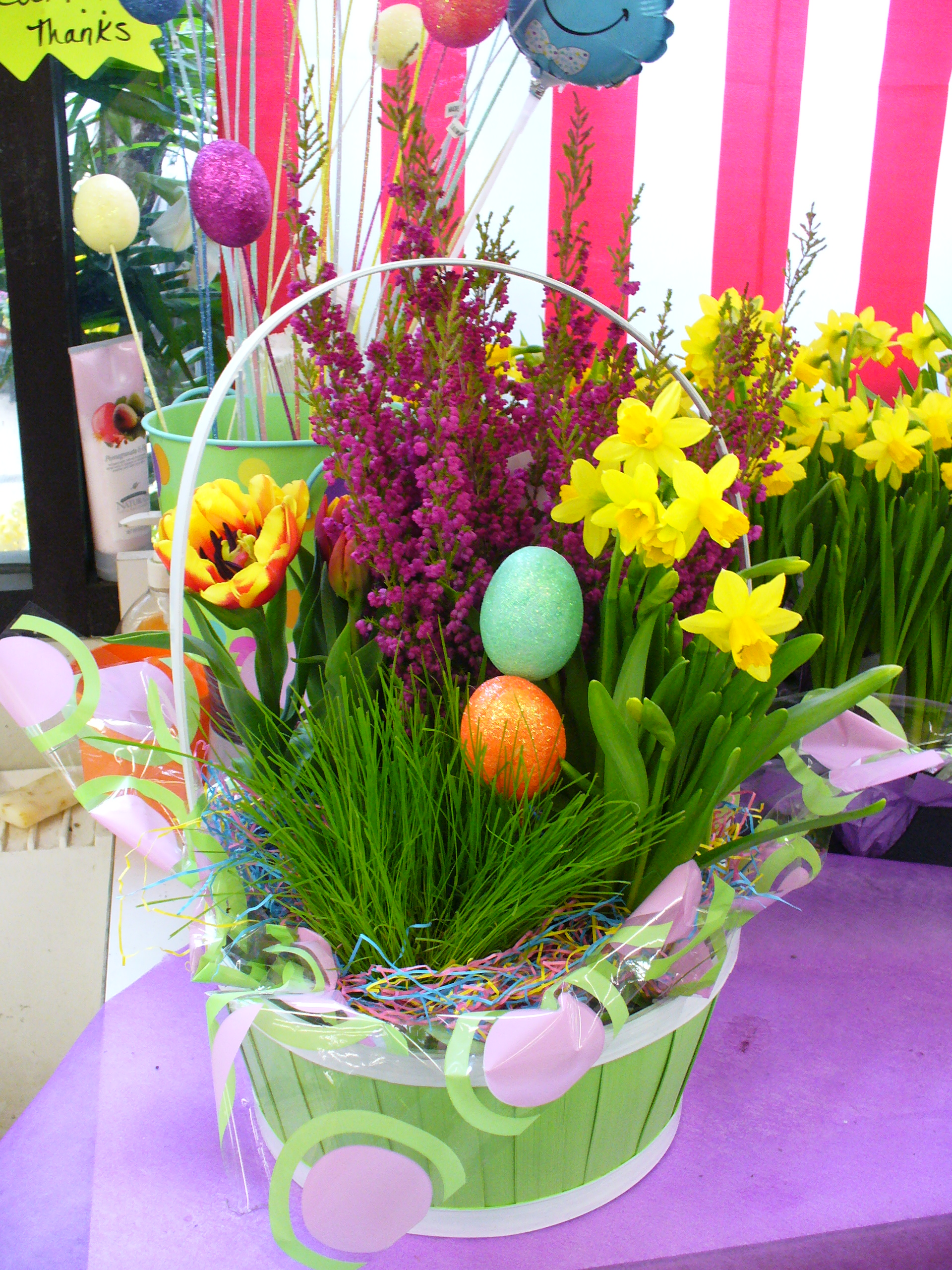 Spring Garden, Wicker Basket, bulb